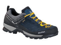 Salewa MS MTN Trainer GTX (2018)