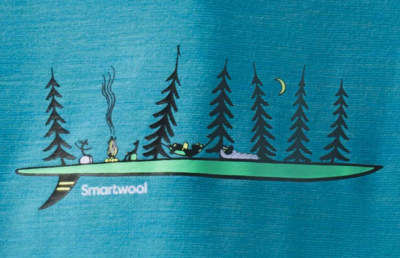 Smartwool W Merino Sport 150 Camping With Friends Graphic Tee  - 3